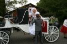 Wedding_31